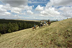 Horseback Riding White Mountains