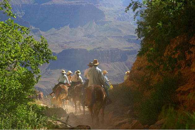 Sightseeing Tours Grand Canyon